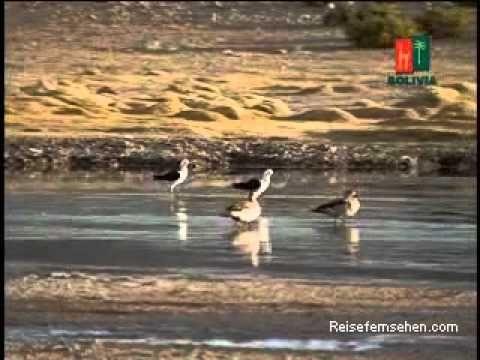 Bolivien / Bolivia: White Desert powered by Reisefernsehen.com - Reisevideo / travel video