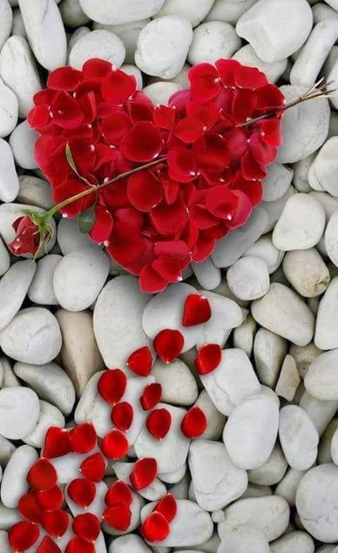Pin Von Jj S Passions Auf Rosas Herz Liebe Herz Bilder Schone Herzen