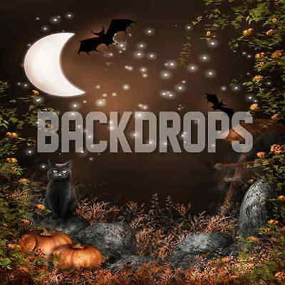 10x10 computer printed halloween backdrop/background/banner - halloween backdrop