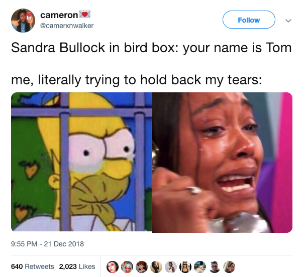 Bird Box Memes Best Reactions In Twitter Funny Relatable Memes Funny Pictures Stupid Funny Memes