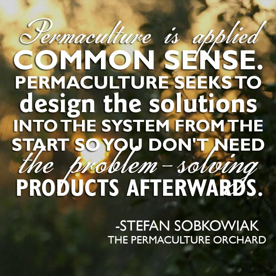 http://www.permacultureorchard.com/  #Permaculture #Orchard