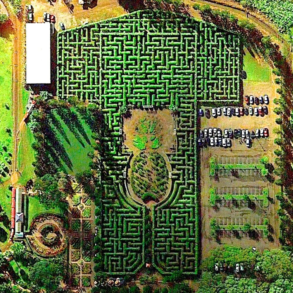 Pineapple Garden Maze Wahiawa, Hawaii, USA Imagens de