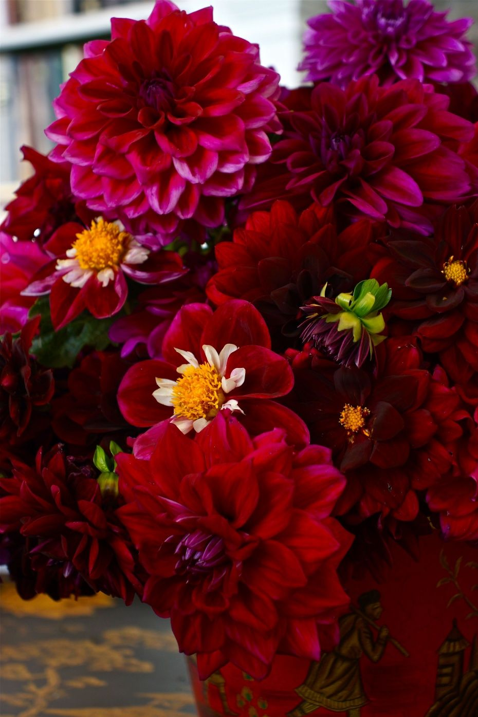 I love the whole color range of dahlias, but the deep reds and ...