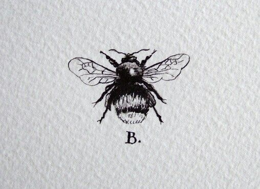 Kind of like the inclusion of the letter maybe would put an M for the letter of my last name before I got married the bee tattoo is for family after all