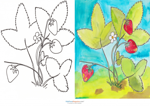 Match Up Coloring Pages – Strawberry Plant | Seasons of the Year ...