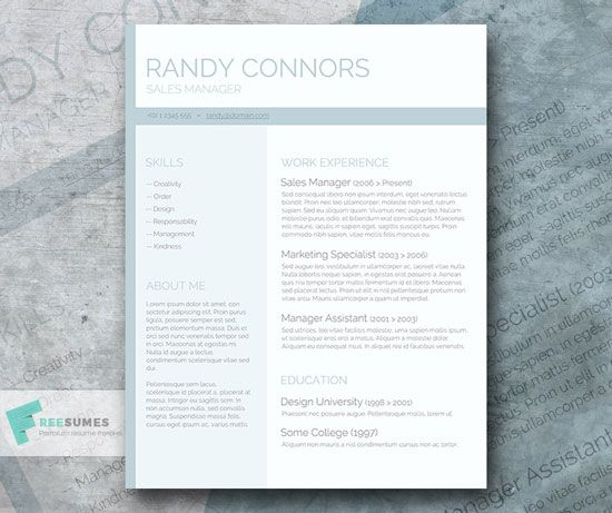 Free Cv Resume Templates In Word Format   Portfolio Concepts