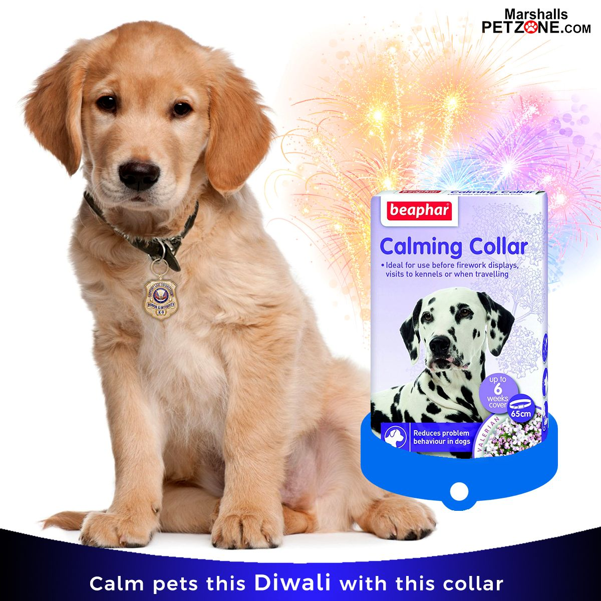 Beaphar calming collar for dogs at very lowest price