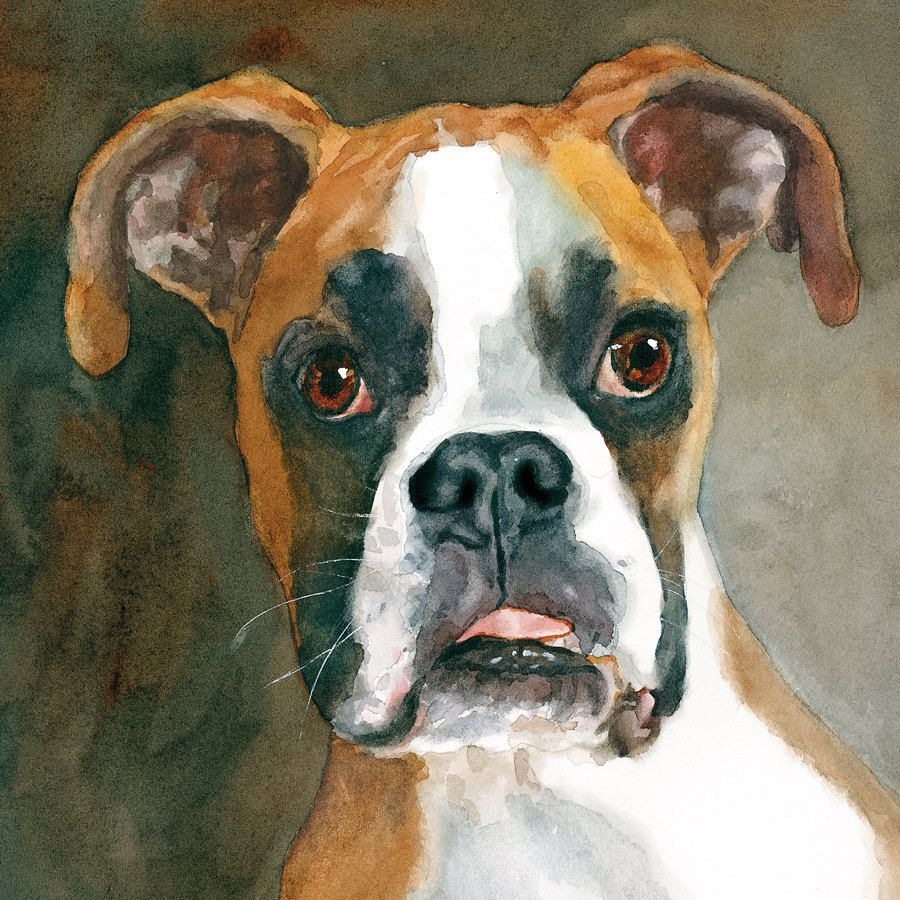 Boxer Print Of Watercolor Dog Painting By Ediefaganart On Etsy