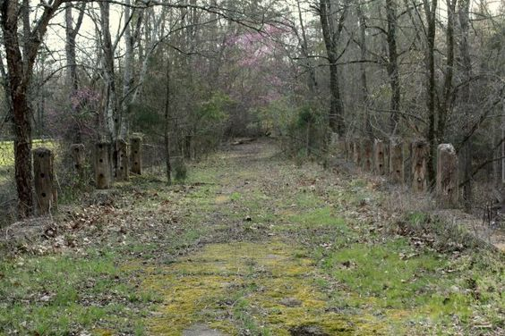 4. Old US Highway 378 Bridge in the woods - McCormick (Trailhead at this Google link)