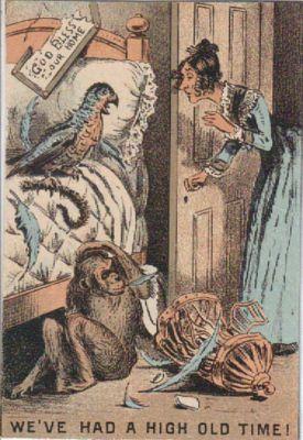 Comedy Monkey Parrot Trade Card c1880s | Culture art, Art ...