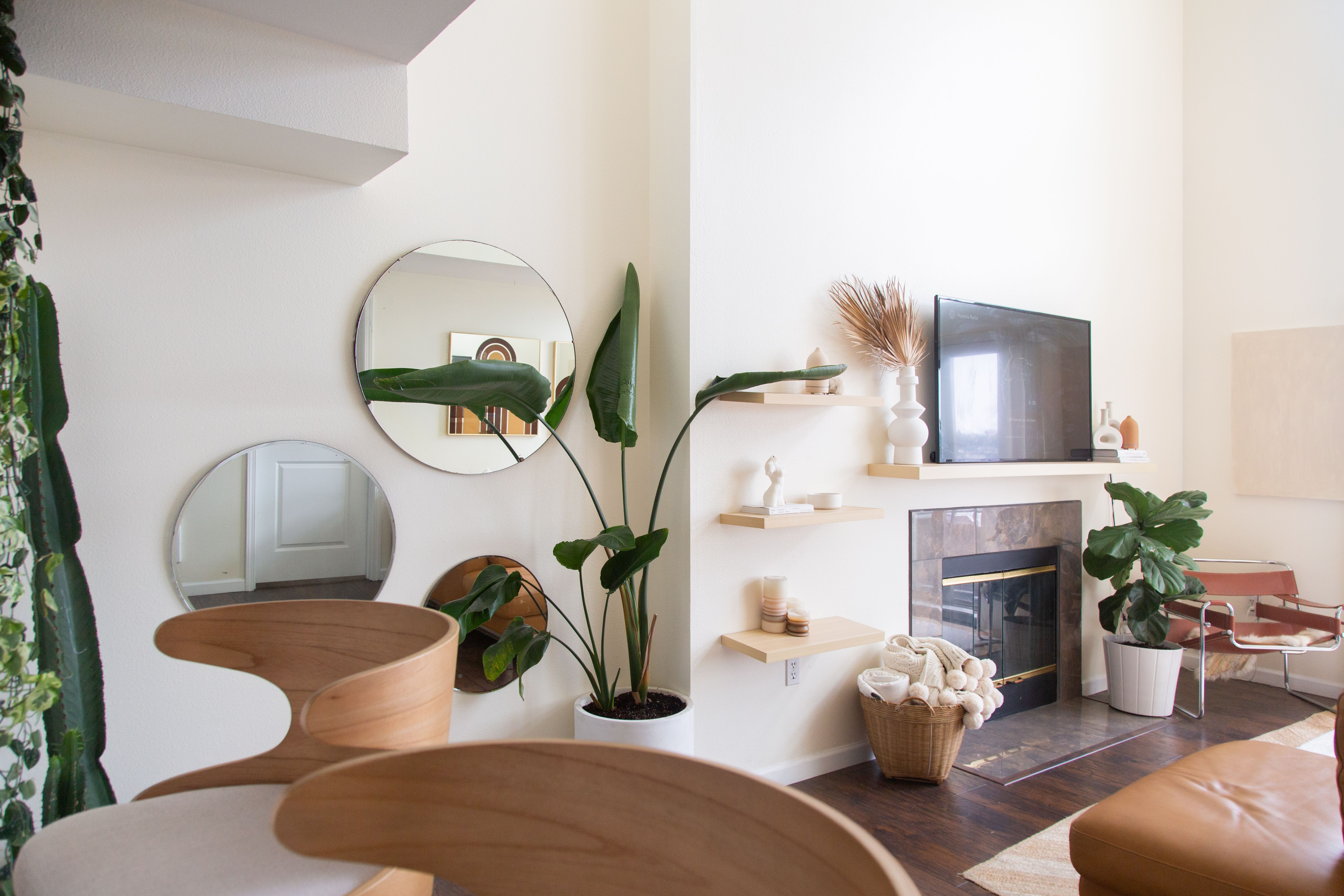 Ideal Indoor Plants For Every Room Best Plants For 400 x 300