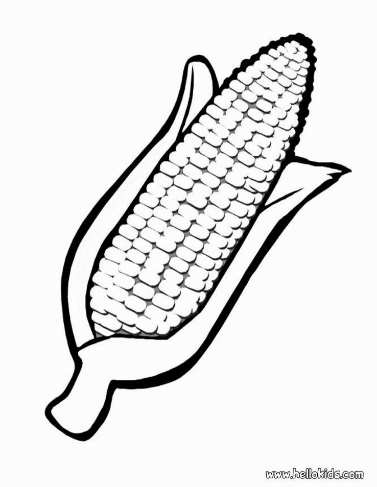 Corn Stalk Template Corn Coloring Pages Coloring Pages