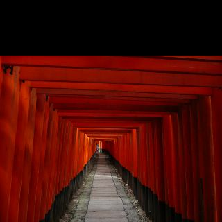Fushimi Shrine, Kyoto. More than 1000 gates. One feels as if he were in a labyrinth.