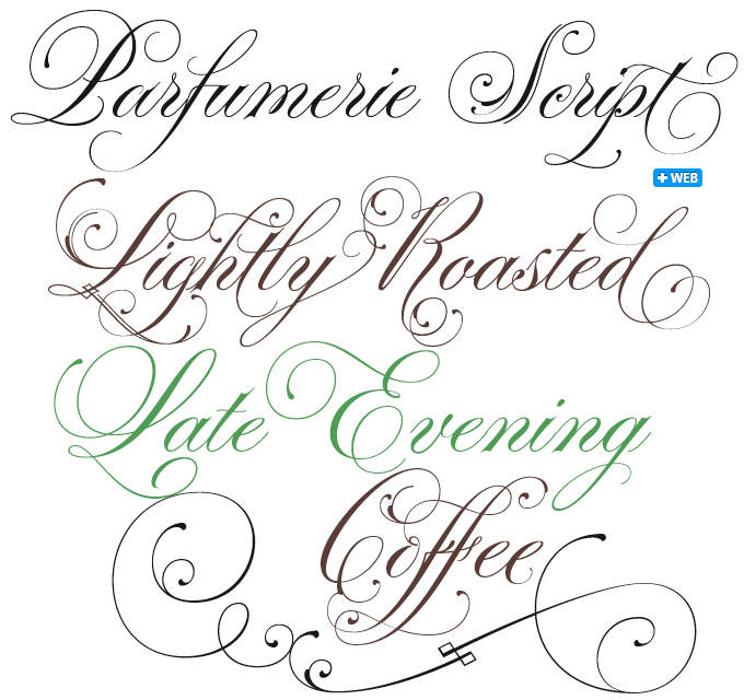 Parfumerie Script Font Soo Pretty Type To Love