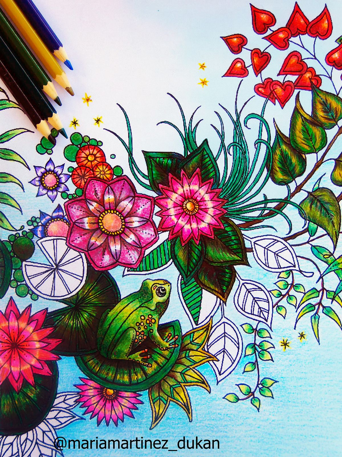 Jardin Secreto Libro Johanna Basford Maria Martinez Dukan Con