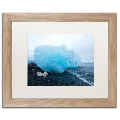 Trademark Art The Blue Egg by Philippe Sainte-Laudy Framed Photographic Print Size: 1