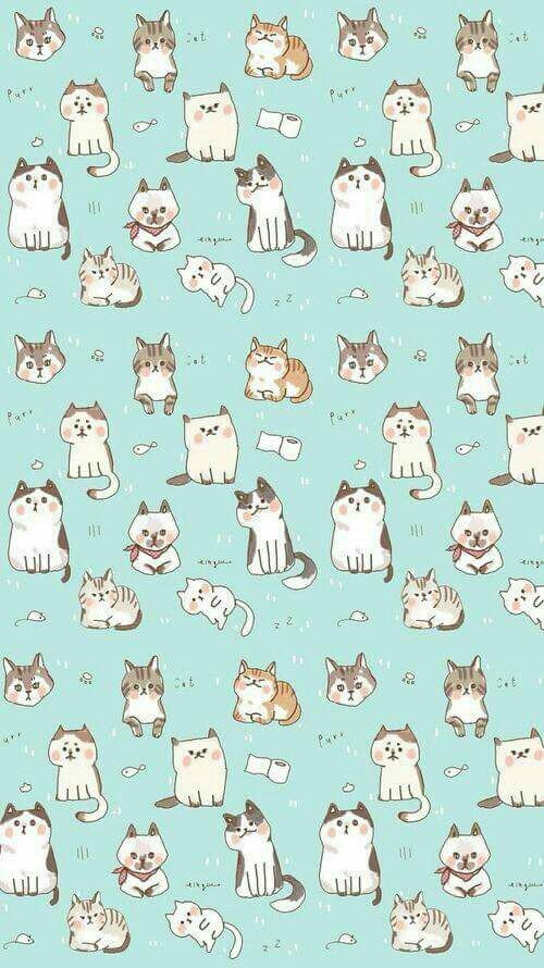 Imagen de cat, wallpaper, and background