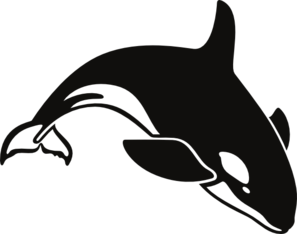 killer whale clip art cricut and scal pinterest killer whales rh pinterest com
