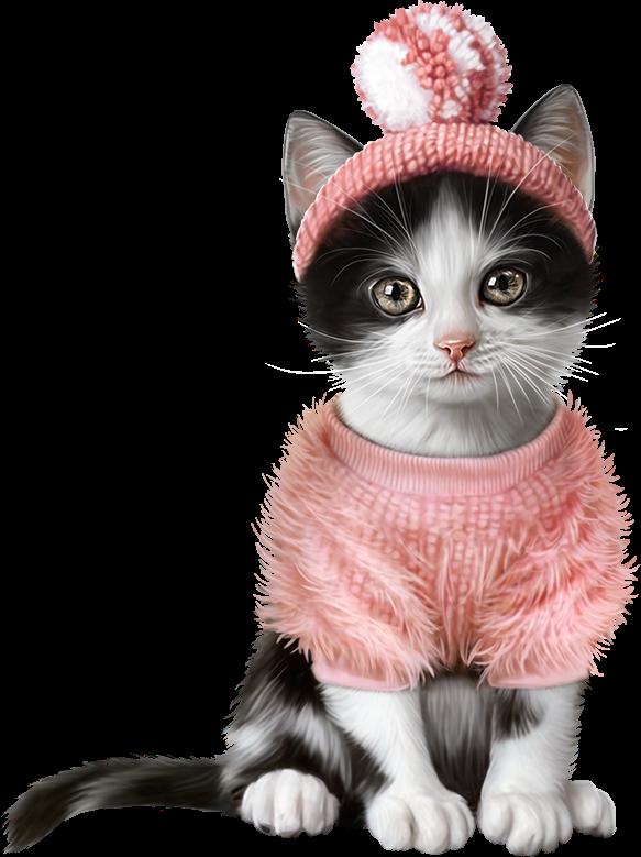 Koty. Dyskusja na liveinternet - Rosyjski serwis internetowy Diaries