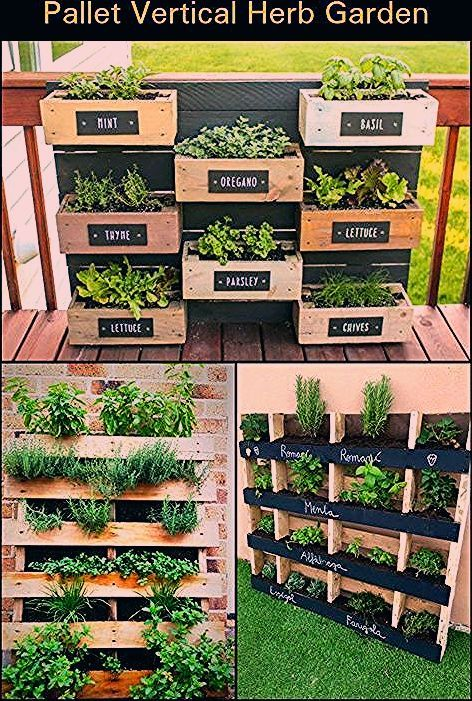 Photo of Most current Cost-Free herb garden ideas Ideas