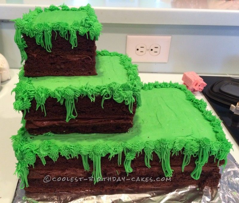 It Has It All Minecraft Cake Homemade Minecraft Cakes