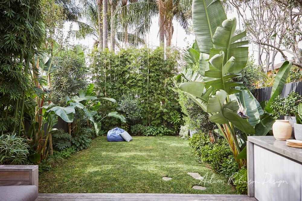 Landscape Design Bondi Adam Robinson Design Landscape Design Small City Garden City Garden