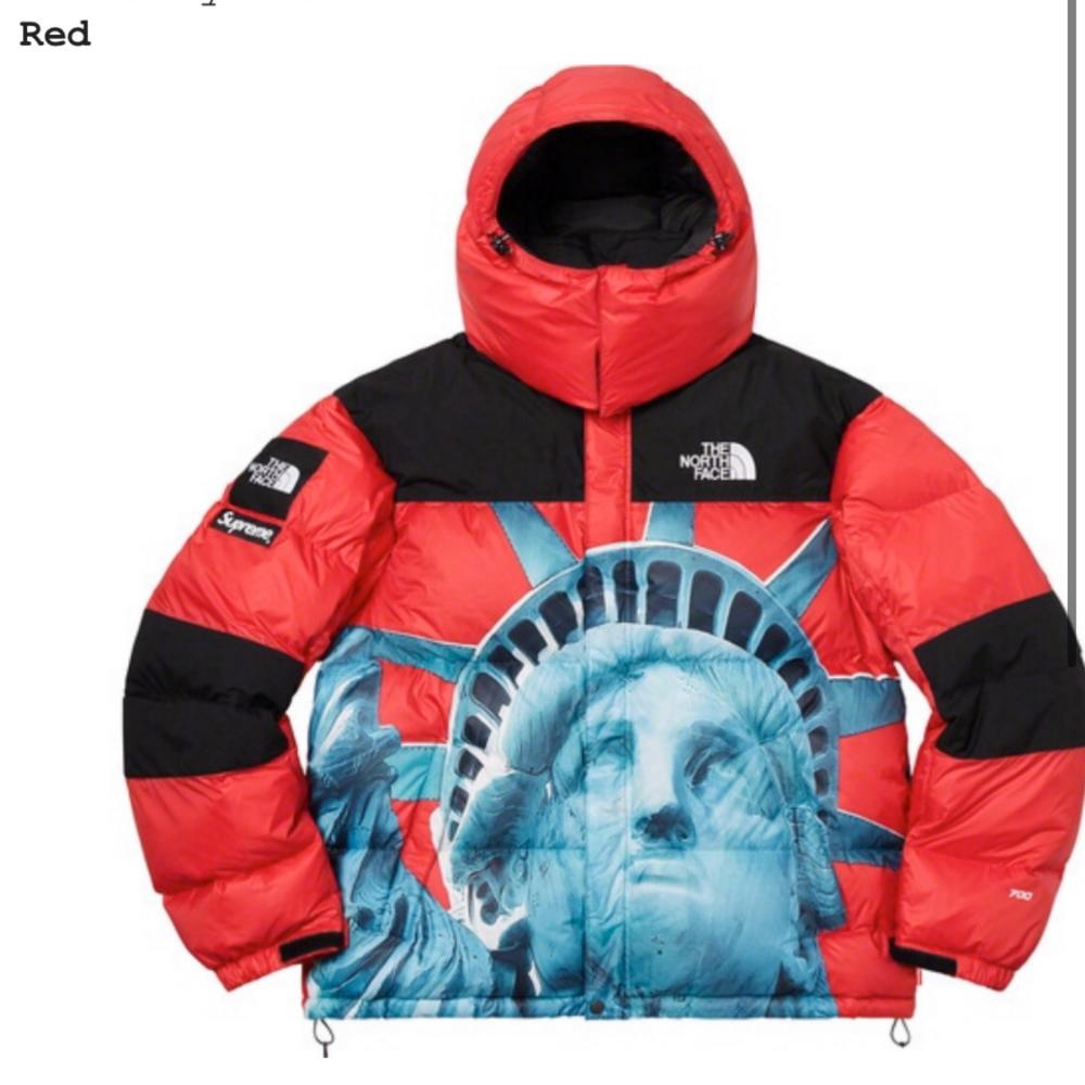Supreme The North Face Statue Of Liberty Jacket North Face Coat The North Face Statue Of Liberty