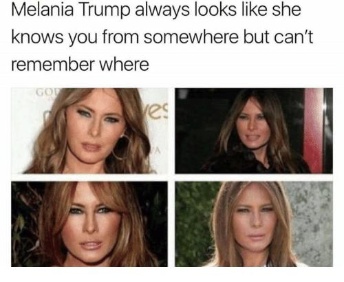 Pin By Swervin On Politics Trump Memes Trump Melania Trump