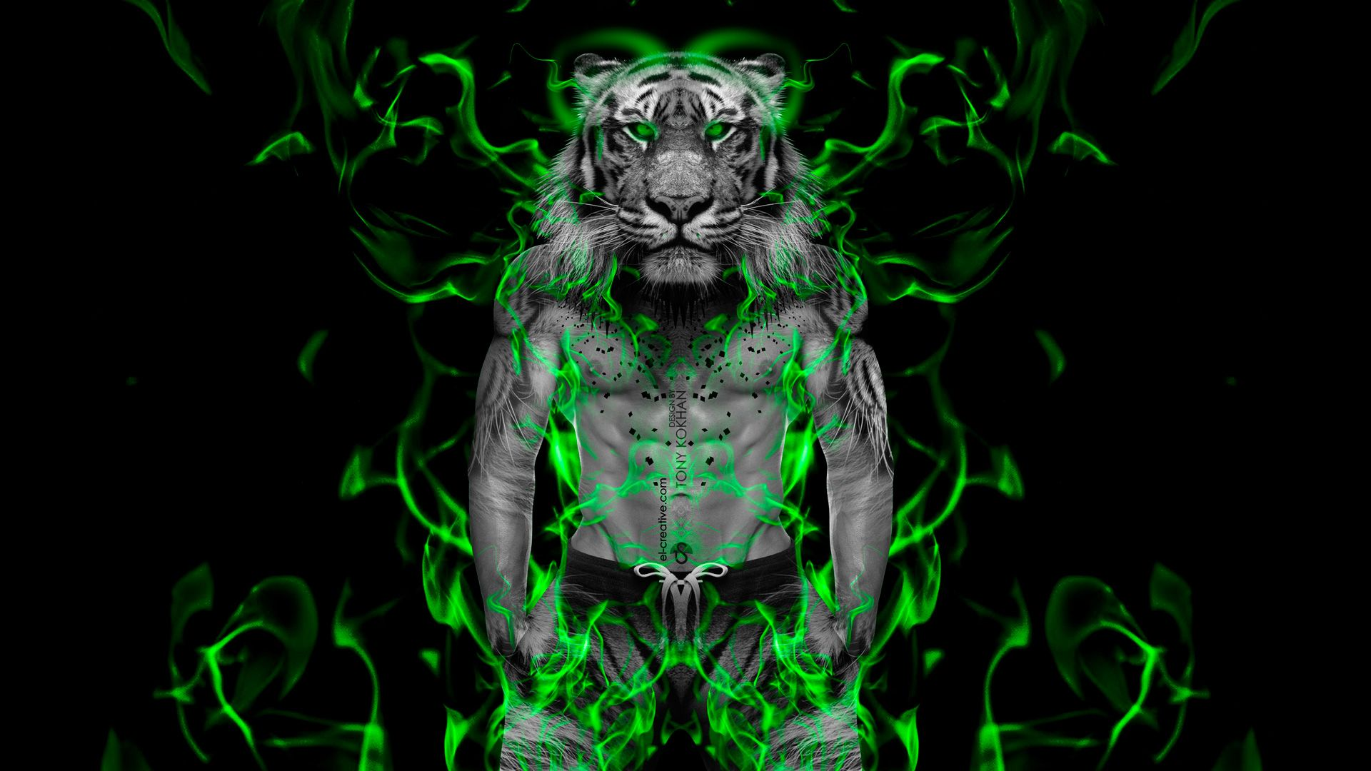 wallpapers lights singer description of green neon light tiger in