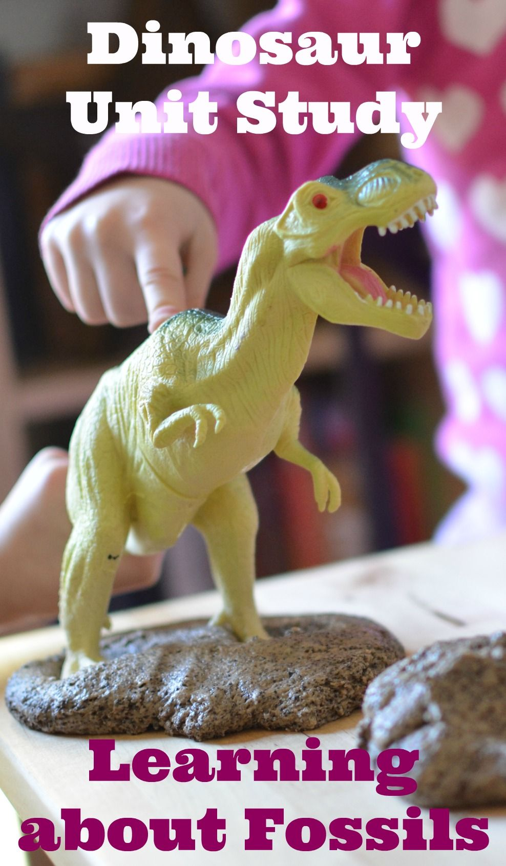 Dinosaur Unit Study- Teaching kids about fossils
