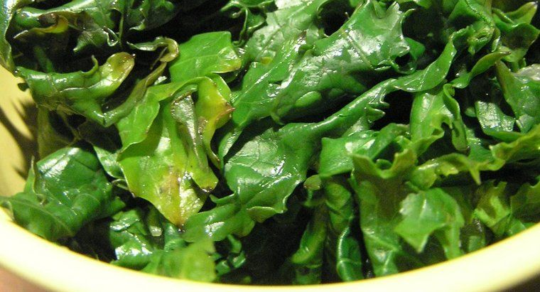 How Do You Freeze Kale Without Blanching It First? (With