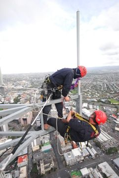 Maintenance on Auckland's Sky Tower in New Zealand  | My job