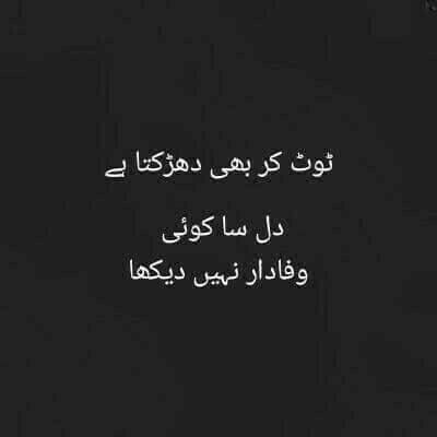 Pin on urdu Quotes and saying