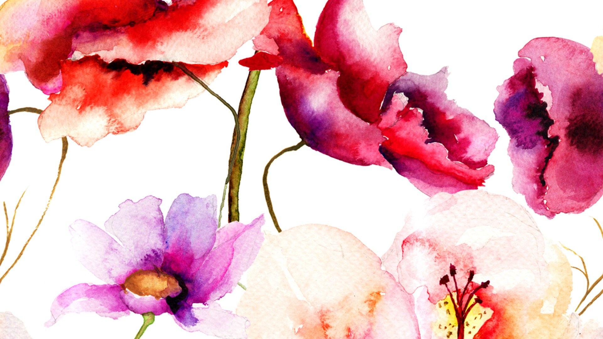 Roses In Watercolor Hd Desktop Background Wallpapers Hd Free