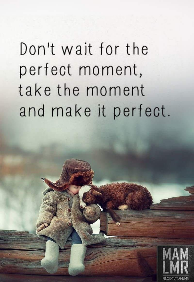Perfect One Moment In Time Enjoying Life Quotes Life Quotes