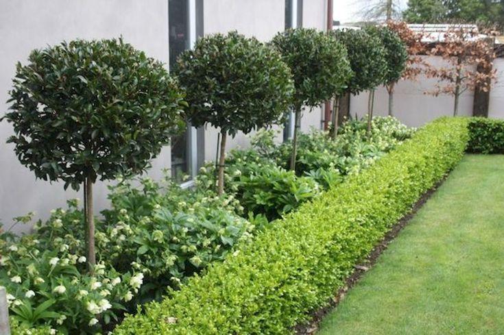 60 wunderschöne Ideen für die Gartengestaltung im Vorgarten - Stylekleidung.com #frontyardlandscapingideas