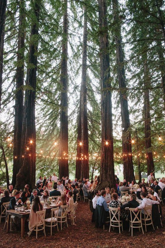 An Elegant, Enchanted Forest Wedding Theme Palette | weddingsonline