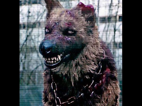 Документальный фильм чернобыльской фото 491-613