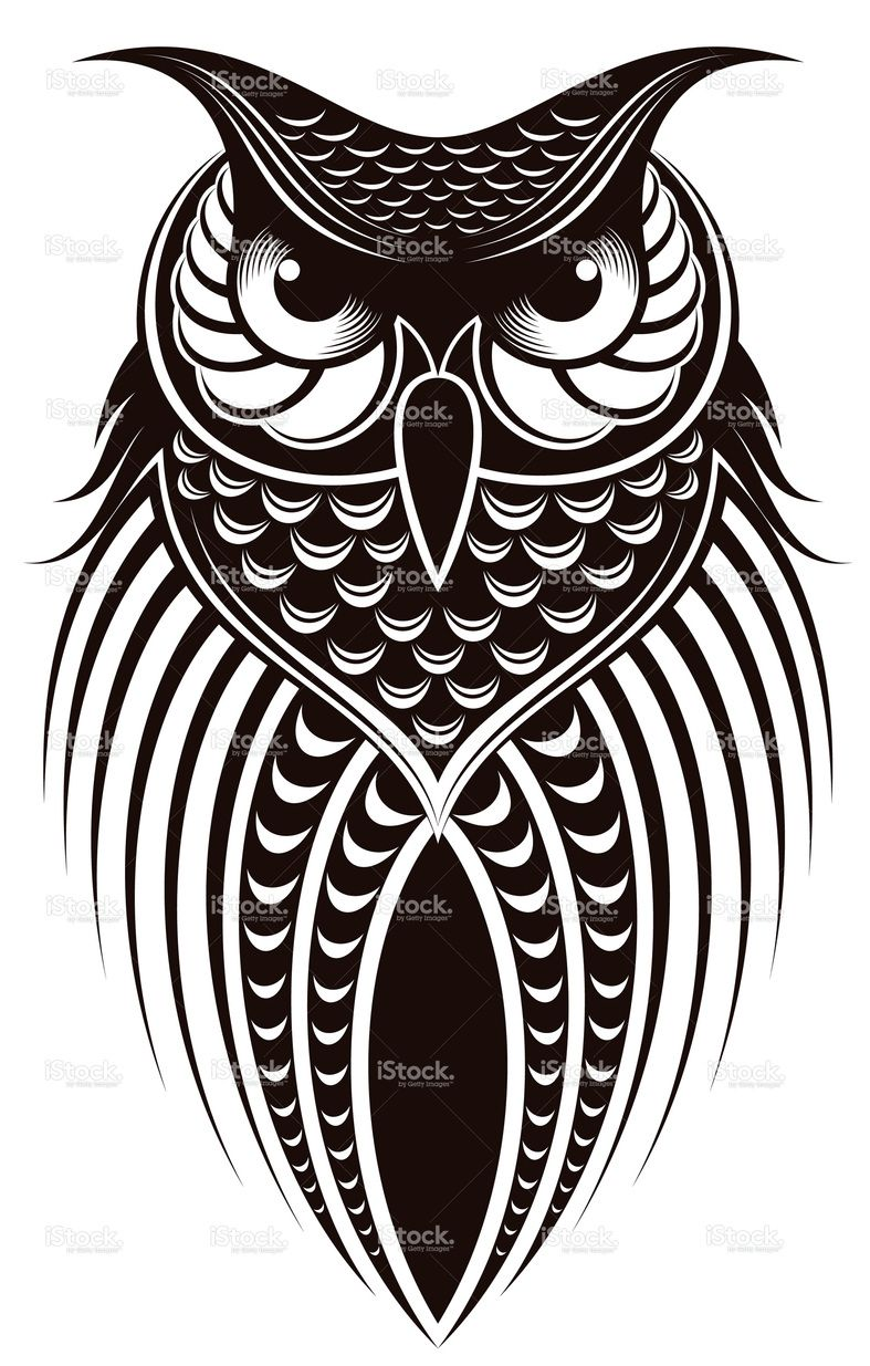 owl illustration vector art owl and big project rh pinterest co uk owl vector art free owl vector art free download