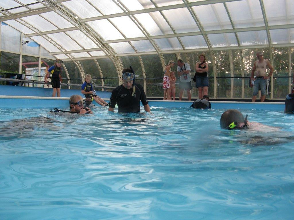Camping Met Overdekt Zwembad Twente De Papillon Faciliteiten