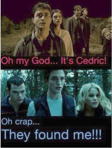 Harry Potter Netflix Harry Potter Memes Clean Harry Potter Vs Twilight Twilight Memes Harry Potter Memes Hilarious