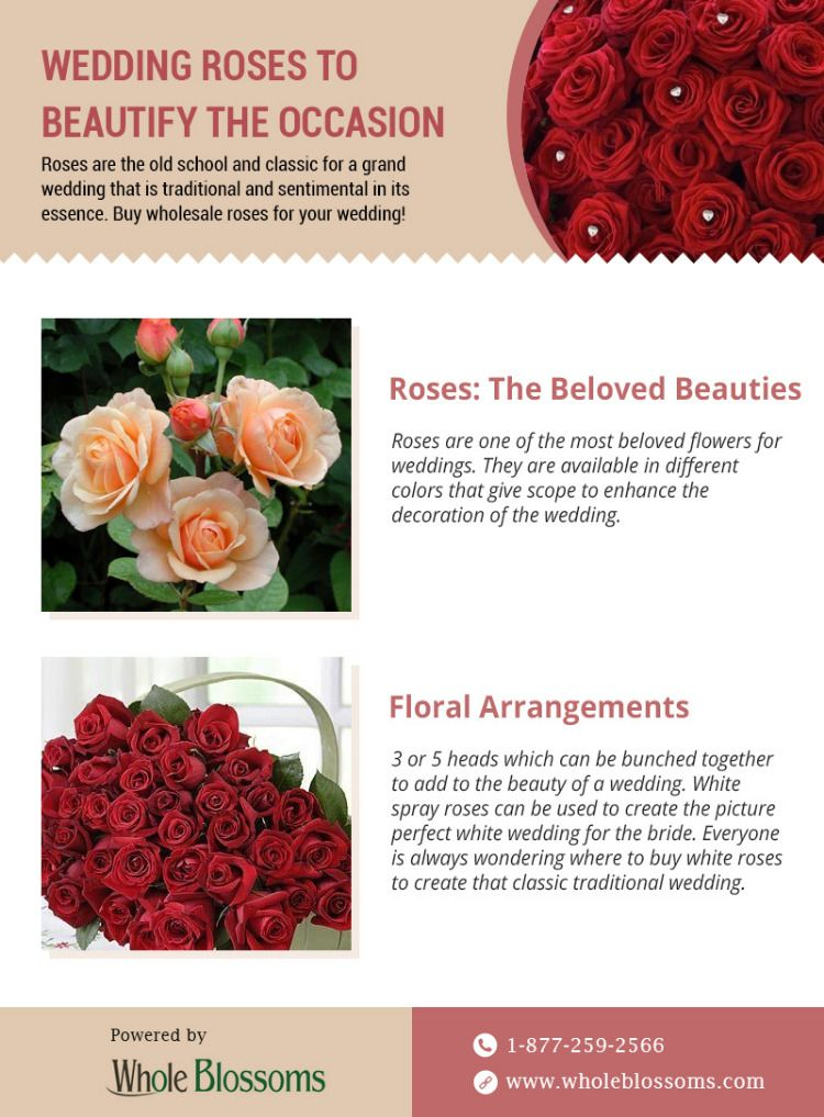 Beautify Your Day With Wholesale Roses Flowers Photography Beautiful Wholesale Roses Ordering Roses
