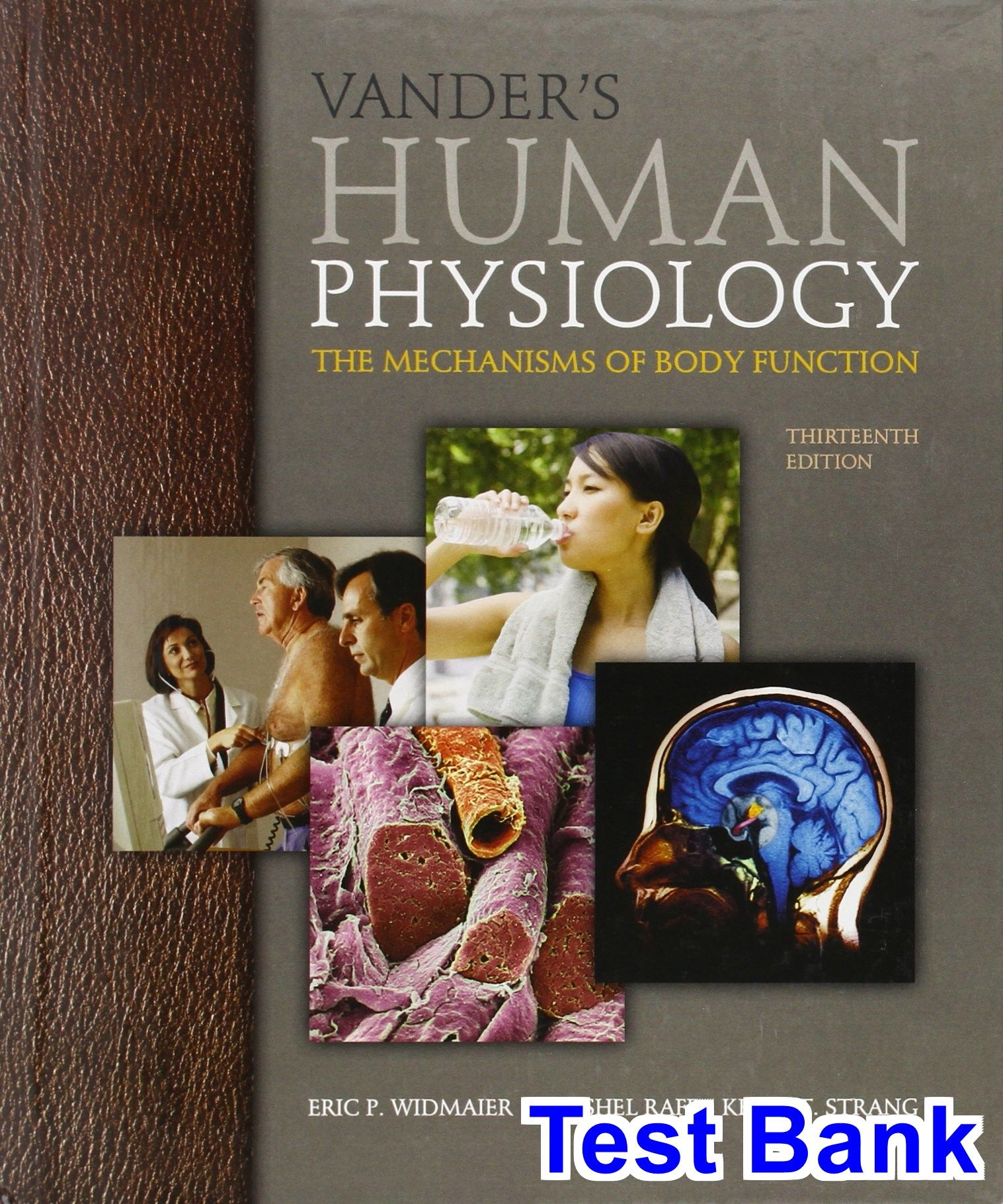 Vanders Human Physiology The Mechanisms of Body Function 13th ...