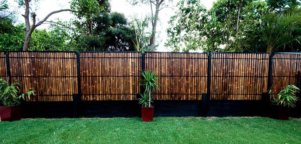 Uk Bamboo Style Uk Bamboo Supplies Ltd Bamboo Garden Bamboo