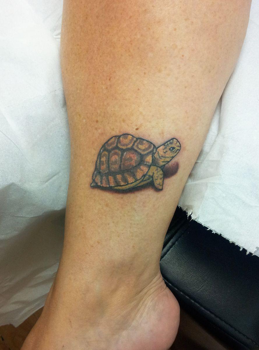 Tortoise tattoo google search animal tattoos for Little turtle tattoo