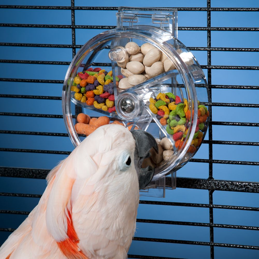 Bird Enrichment Toys : Boredom busters for pets toy bird and conure