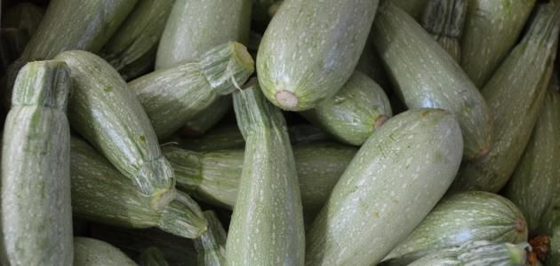 كيف احفظ الكوسا بالفريزر Vegetables Cucumber Food
