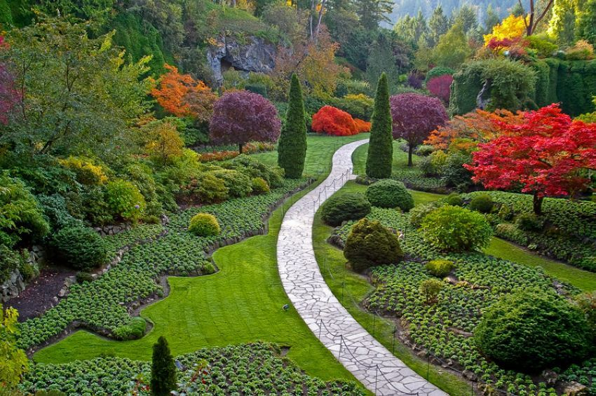Victoria gardens canada this is my porn pinterest gardens victoria gardens canada thecheapjerseys Images