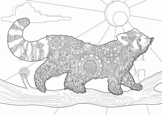 Printable Red Panda coloring page Instant download adult coloring - fresh realistic rhino coloring pages