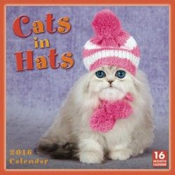 Cats in Hats Kalender 2016 http://goo.gl/mjcwVs